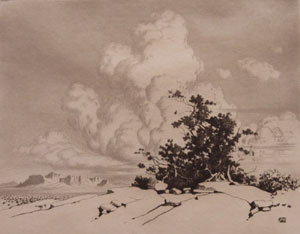 A George Elbert Burr etching as depicted on a webpage for the artist.
