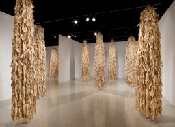 Getting to know site-specific installations at ASU, SMoCA