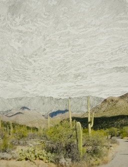 The widening circle of Phoenix's art scene