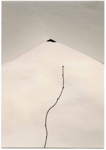 "The Masao Yamamoto show at Lisa Sette Gallery in October 2013 included this stunning photograph, ""1529, from Kawa = Flow."""