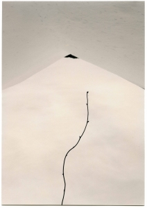 The Masao Yamamoto show at Lisa Sette Gallery in October 2013 included this stunning photograph,
